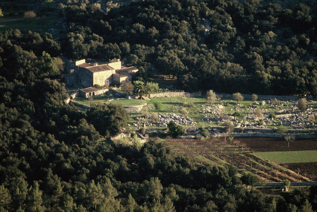 La marca Serra de Tramuntana Mallorca Patrimoni Mundial distinguirá los productos que crean el paisaje cultural de la Serra