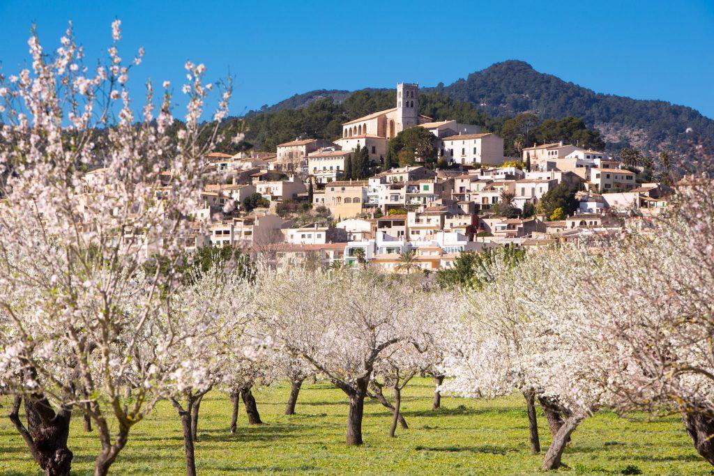 El Consorci Serra de Tramuntana Patrimoni Mundial destina un millón de euros para recuperar la economía de los municipios después de la covid-19